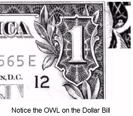 1 dollar bill owl spider. dollar bill owl spider. 1